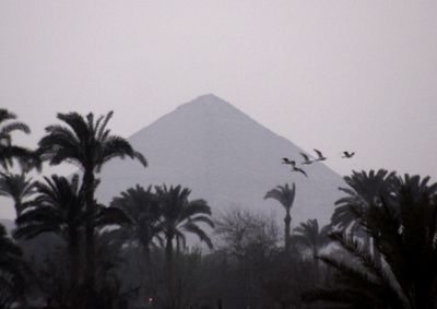 """Birds fly over the 4,500-year-old """"bent"""" pyramid, in Dahshur, Egypt.  (Associated Press / The Spokesman-Review)"""