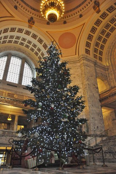OLYMPIA – The Association of Washington Business Holiday Kids' Tree adorns the Rotunda of the domed Legislative Building on the Capitol Campus. (Jim Camden / The Spokesman-Review)