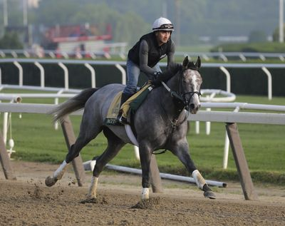 Exercise rider Joe Ramos rides Tacitus during a workout at Belmont Park in Elmont, N.Y., on Thursday.  The 151st Belmont Stakes will be run on Saturday. (Seth Wenig / AP)
