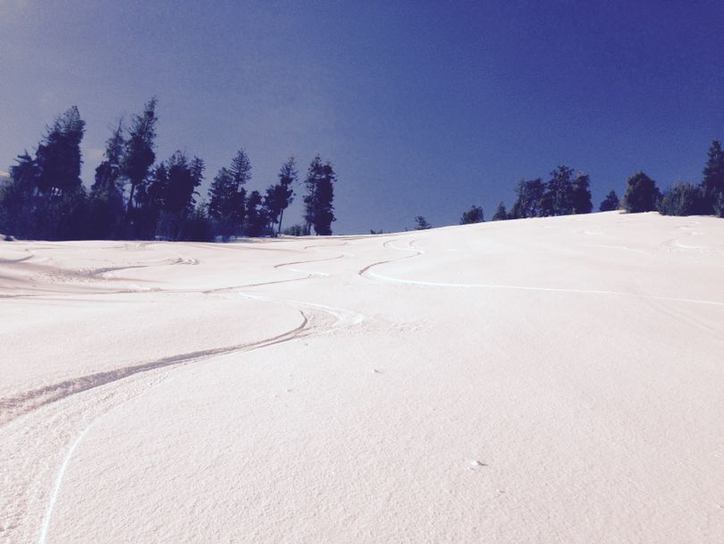 Ski tracks in the powder, in the sunshine, on Saturday... (Betsy Z. Russell)