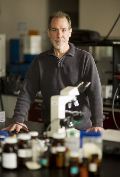 Organic chemist Dave Vachon and his company Iasis Molecular Sciences, which collected about $486,000 in grants from Health Sciences and Services Authority, are developing patented therapies to fight infections, inflammations and tissue loss. (Colin Mulvany)