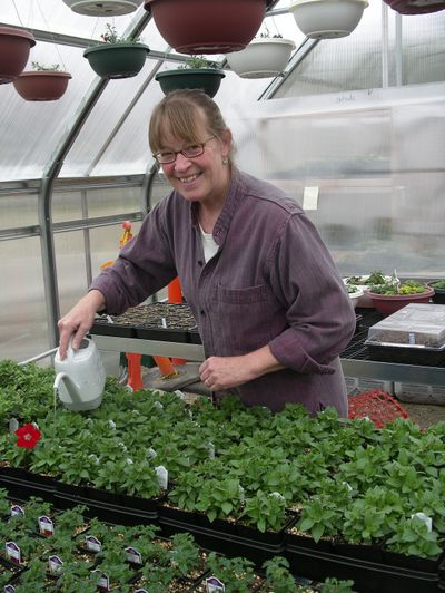 Ann Jackson-Avery prepares plants for last year's Valley YMCA plant sale. This year's sale is Friday and next Saturday.Photo courtesy of Pat Munts (Photo courtesy of Pat Munts / The Spokesman-Review)