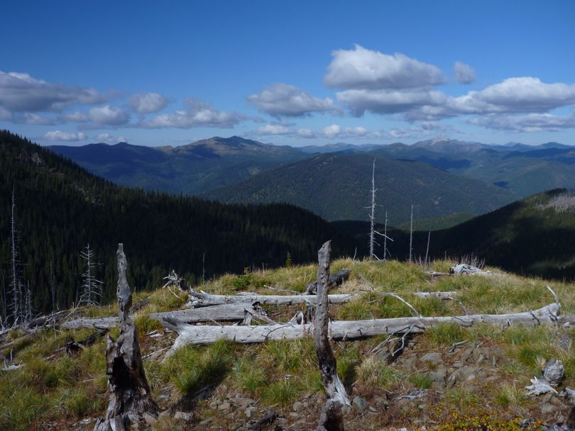 Looking over the Salmo-Priest Wilderness from Mankato Mountain on the Shedroof Divide. (Rich Landers)