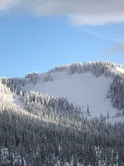 A photo of the Feb. 27 fatal avalanche taken by a witness from across the valley.  (Courtesy of Avalanche.ogr)