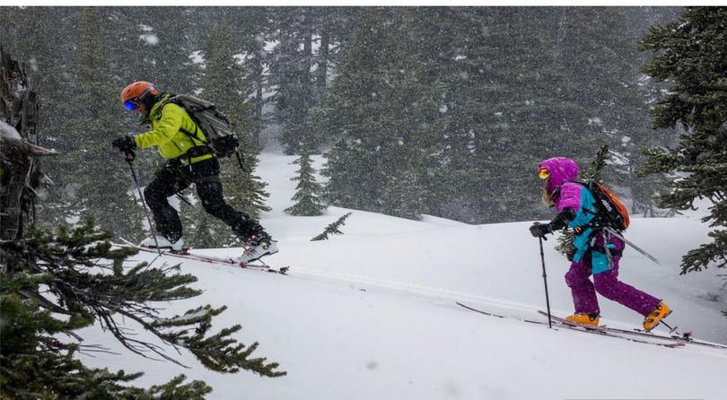 Backcountry skiers are served by highly-developed gear choices. (G3 & Doglotion Media)
