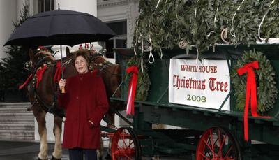 First lady Laura Bush  with the just-delivered White House Christmas tree  on Sunday.  (Associated Press / The Spokesman-Review)