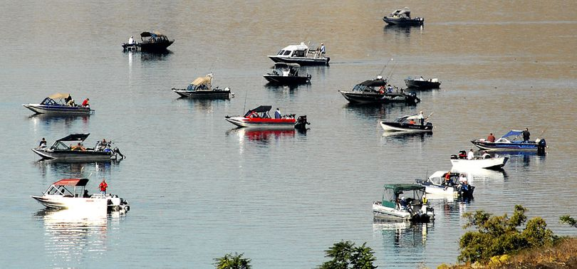 The fleet is out, congregating at the confluence of the Snake and Clearwater Rivers at Lewiston, casting their luck and a lure to catch a salmon or a steelhead.  Tribune/Barry Kough (Tribune/barry Kough / The Spokesman-Review)