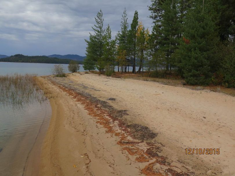 Sandy beach at Priest Lake cottage site that sold at auction over the weekend for more than $1 million (State of Idaho)
