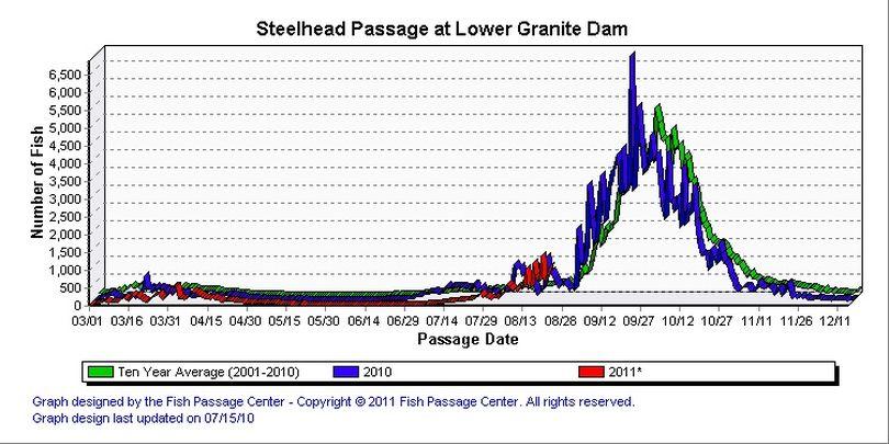 Steelhead counts over Lower Granite Dam posted on Aug. 24, 2011. (Fish Passage Center)