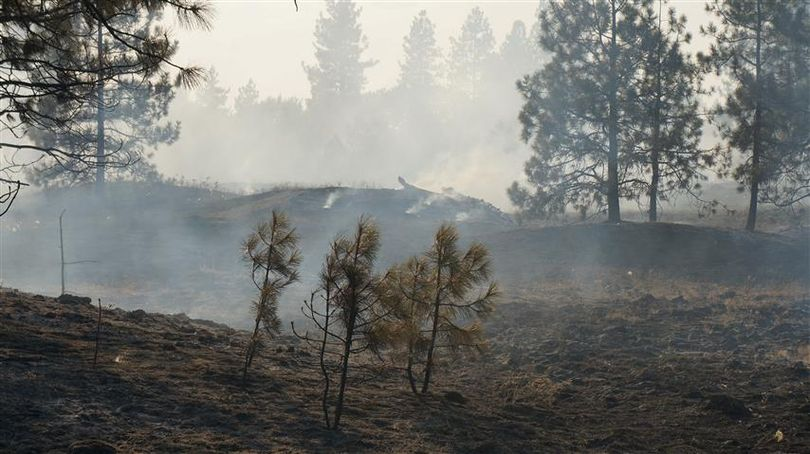 This brush fire burned an area north of Mansfield Ave. in Spokane Valley on Tuesday, July 30, 2013. It was started by an illegal camp fire.  (Photo courtesy the Spokane Valley Fire Department)