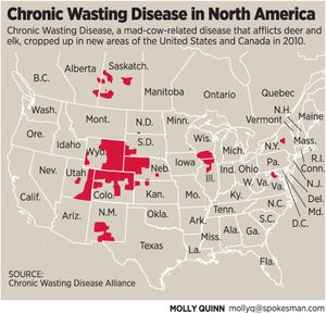 <!-- Chronic Wasting Disease graphic by Molly Quinn -->