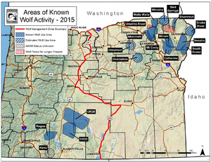 Map shows wolf packs and wolf activity documented at the end of 2015 by the Oregon Department of Fish and Wildlife. (Oregon Department of Fish and Wildlife)