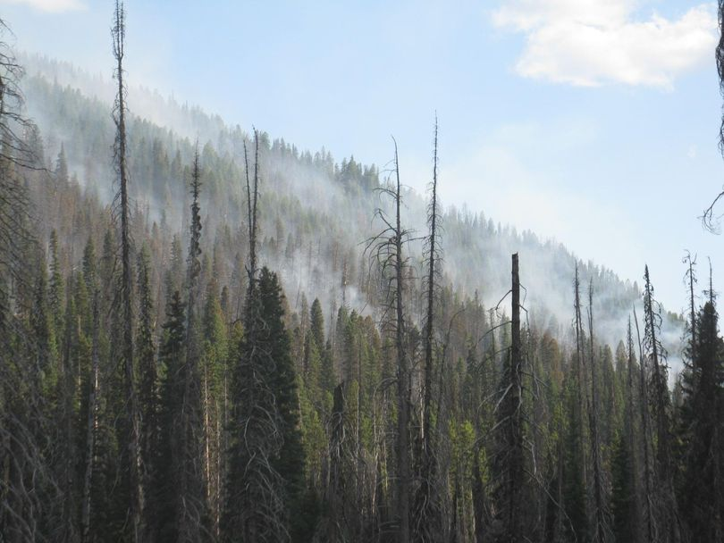 The Missouri Fire is burning in steep terrain with heavy fuels, about 40 miles east of McCall. (Inciweb)