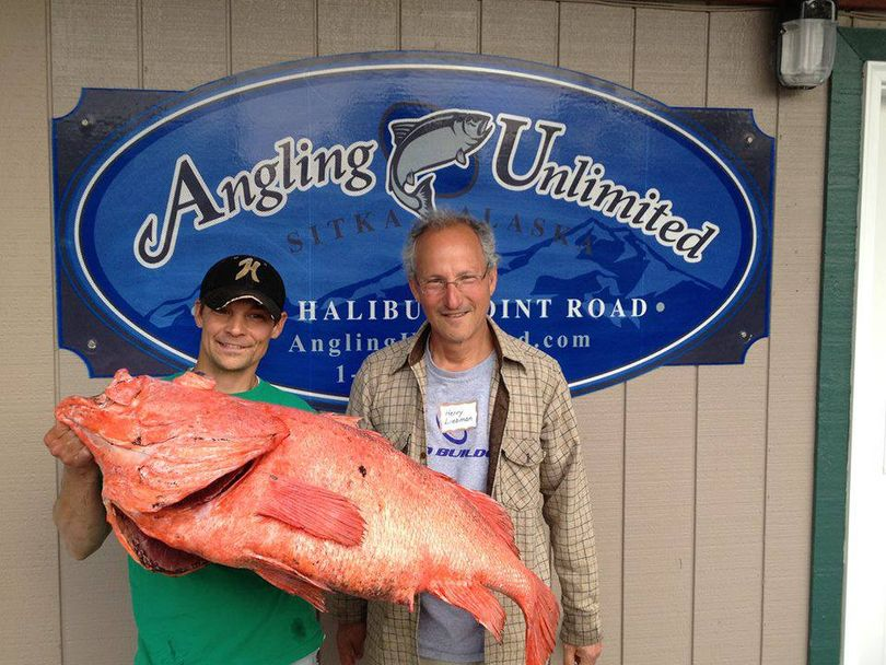 Henry Liebman of Seattle caught a 39.08 pound shortraker rockfish wild fishing in Sitka on June 21, 2013, breaking the Alaska state record of 38.68 pounds caught in 2001. Alaska Fish and Game Department biologists officially aged the fish at 64 years old. (Angling Unlimited)
