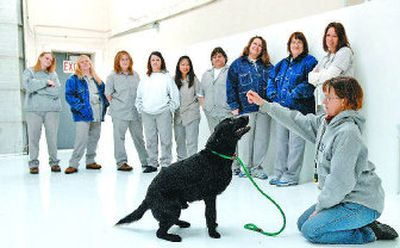 Trainer Lisa Lucas shows federal inmates at Geiger Corrections Center how to make a dog  from SCRAPS sit on Wednesday.   (photos by DAN PELLE / The Spokesman-Review)
