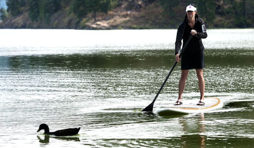 "Balancing act: ""September is the best,"" said Lisa Adlard, of Coeur d'Alene, as she maneuvered her paddleboard past a duck on Fernan Lake on Monday. (Kathy Plonka)"