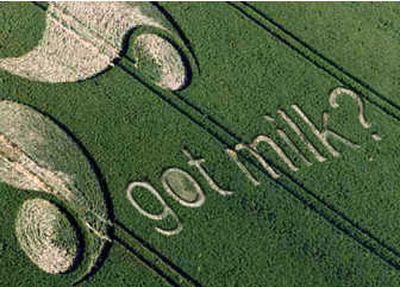 A Got Milk? promotion is carved into a California farm.Courtesy of California Milk Processor Board  (Courtesy of California Milk Processor Board / The Spokesman-Review)