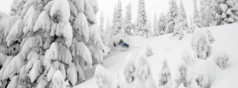 Schweitzer skiers were swimming in powder on Feb. 28, 2017. (Schweitzer Mountain Resort)