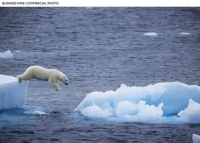 """A polar bear diving into the Arctic Ocean is captured in the film """"Earth,"""" which opens Wednesday on the new label Disneynature. The polar bear is one of 41 animal species featured in the film. Business Wire (Business Wire / The Spokesman-Review)"""