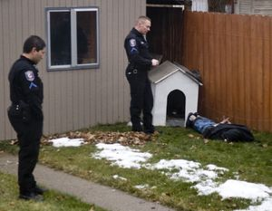 A carjacking suspect is taken into custody by Spokane Police after a police dog discovered him hiding in a doghouse in a backyard of a house on the 2500  block of North Normandie Street. (Colin Mulvany)