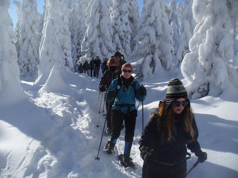 Snowshoers join a First Day Hike at Mount  Spokane on Jan. 1, 2016. (Cris Currie)
