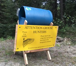 Grouse hunters can help researchers study bird populations by depositing wings and tails of their grouse in barrels stationed around Eastern Washington hunting areas. (Washington Department of Fish and Wildlife)