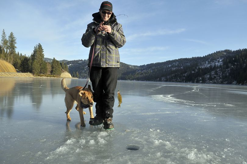 Bryan Lepagnol lifts a small perch from a hole in the ice on Fernan Lake on Friday while his dog, Tank, watches. Fishermen found 5 to 7 inches of ice on Fernan. (Jesse Tinsley)