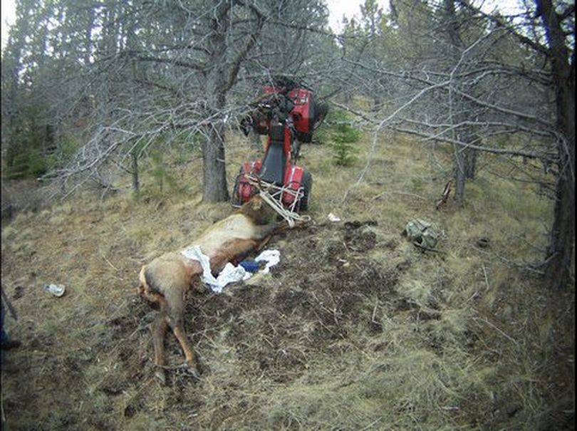 A hunter from Bend survived being impaled by the horn of an elk he was dragging back to camp behind an ATV on Saturday.  (Crook County Sheriff's Office)