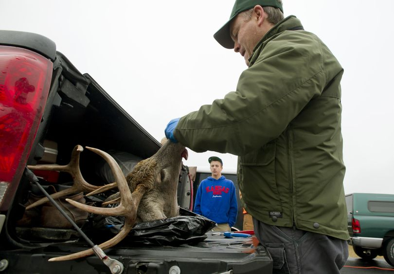 At the truck weigh station north of Deer Park, wash., Jay Shepherd an assistant district biologist with the Washington Department of Fish and Wildlife, takes teeth and tissue samples on whitetail buck shot by Andrew Waltnerof Auburn, Wash. (in back.) Idaho wildlife officials have taken additional steps to prevent chronic wasting disease from entering the Gem State by banning the import of deer, elk or moose carcasses from areas with documented cases of chronic wasting disease. (Colin Mulvany / The Spokesman-Review)