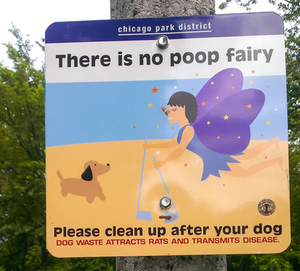 Please carry bags and pick up after your dog.