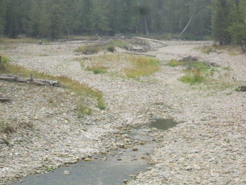 St. Regis River near Haugan in late August 2015. (Denley Loge / Courtesy)