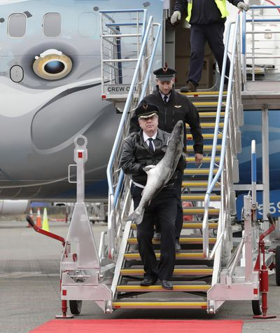 "Captain Michael Adams, lower left, carries a large Copper River king salmon as he walks with first officer Bob Hood, upper right, down some steps from an Alaska Airlines 737 airplane, dubbed the ""Salmon Thirty Salmon"" for its paint job featuring a salmon from the state of Alaska, Friday, May 18, 2018, at Seattle-Tacoma International Airport in Seattle. The plane was carrying thousands of pounds of the first shipment of Copper River salmon and the annual arrival of the fish is a rite of spring in Seattle, where the fish are prized for their flavor and bring the highest prices at restaurants and fish markets. (Ted S. Warren / Associated Press)"