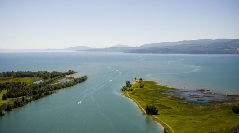 The Flathead River flowing into the north end of Flathead Lake.