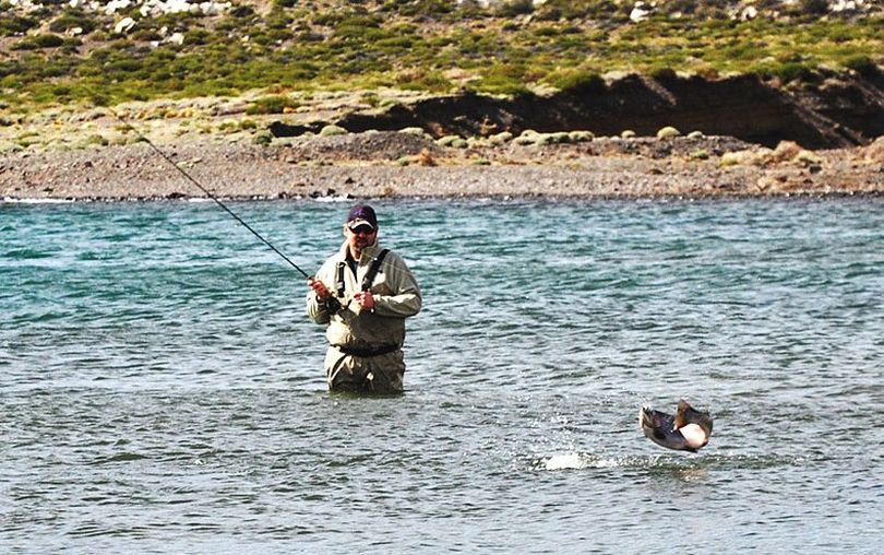 Joe Roope Jr. of Coeur d'Alene's Castaway Fly Shop fights a rainbow trout in Argentina's Jurassic Lake. (Courtesy photo)