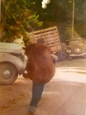 "Jim Scoggin hauled a black bear carcass to the family's Blue Mountains hunting camp in 1939. Family members at the camp in 2016 said the photo, entitled ""When men were men,"" is the oldest remaining photo from the annual camp they've occupied since 1937 and starting on five generations. (Courtesy)"