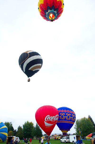 Taking flight: Hot air balloons take off at Tieten Park in Walla Walla on Friday. (Associated Press)