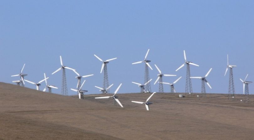 Wind farms such as the one shown above at Altamont Pass in California are killing hundreds of thousands of birds each year, according to the American Bird Conservancy. Wind turbines -- depending on their size, location and speed of the blades -- have been identified as a lethal threat to birds and bats. (Photo: Mike Parr / American Bird Conservancy)