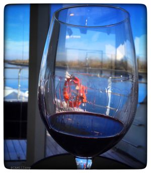 AmaWaterways' wine themed cruises bring the best of American wines to the great rivers of Europe. (Cheryl-Anne Millsap)