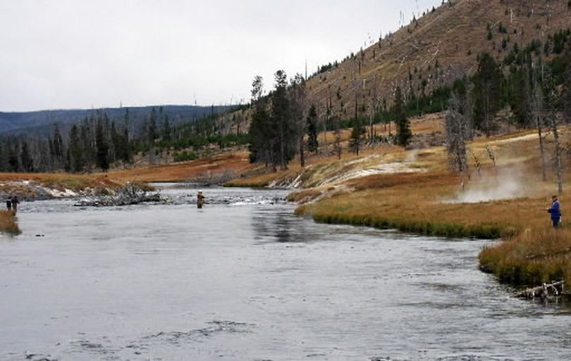 Anglers fishing in Yellowstone National Park. (File)