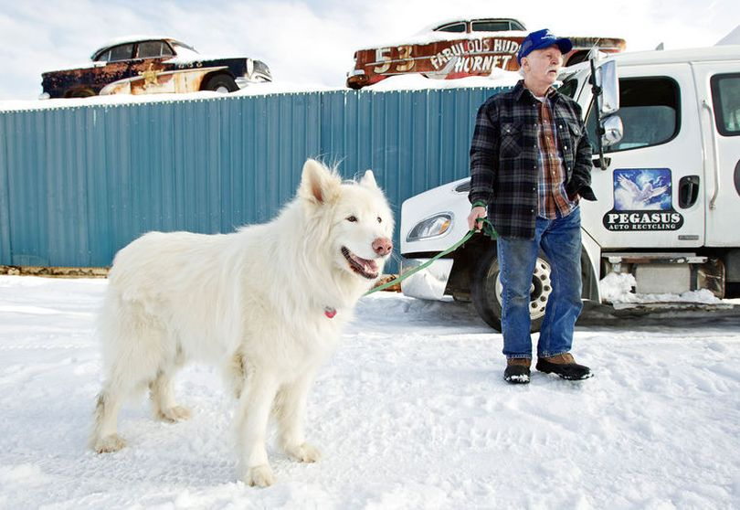 L.T. Jones, owner of Pegasus Auto Recycling in Garwood, is seen in this 2013 Press file photo with Dyno, his pet and his business' mascot. A tundra wolf-malamute mix, Dyno was with Jones from the time the animal was 6 weeks old. Known to many Press readers, Dyno died in June. (Jerome Pollis/Coeur d'Alene Press file photo)
