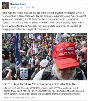 Rep. Heather Scott's Facebook post. (AP photo)