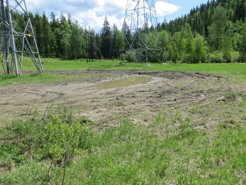 Mudders in their four-wheel drive vehicles trashed a meadow in a power transmission line corridor about 3.5 miles northwest of Ione in early June 2014. The fine for this illegal off-road riding is up to $5,000. (U.S. Forest Service)