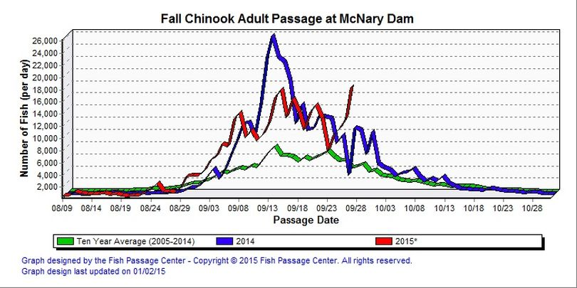 Adult fall chinook counts over McNary Dam as of Sept. 27, 2015. (Fish Passage Center)