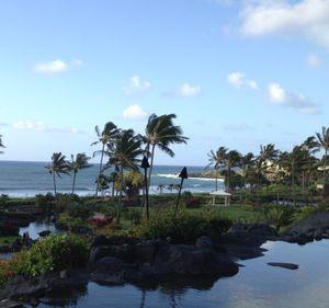 View of the Kauai coast