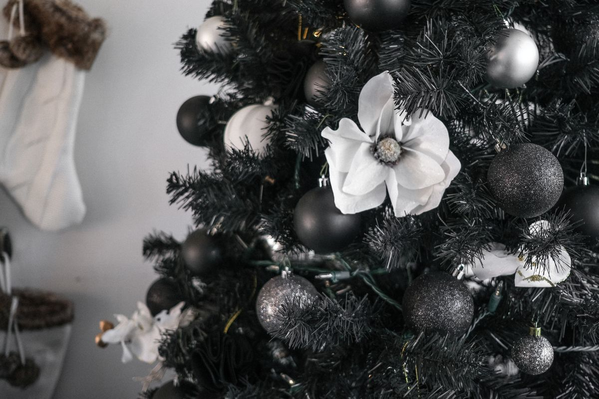 Black Christmas Trees A Symbol Of 2020 Angst Or A Refined Choice The Spokesman Review