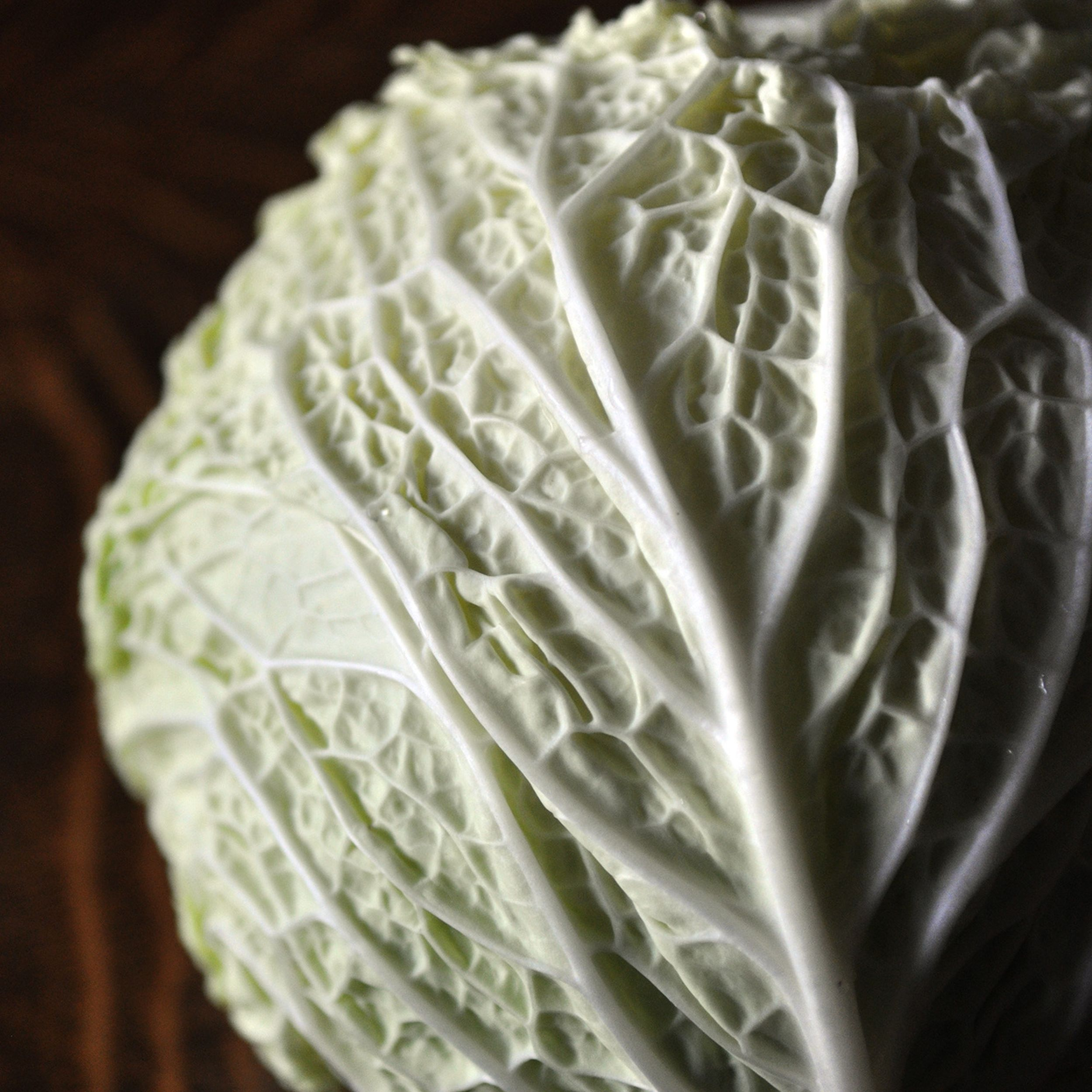 Fifty Shades Of Cabbage A Versatile St Paddy S Favorite The Spokesman Review