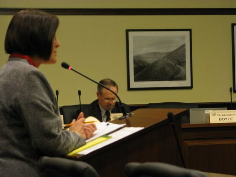 Rep. Judy Boyle, R-Midvale, presents legislation to the House Resources Committee on Tuesday to exempt hunting licenses and tags from the Idaho Public Records Law. (Betsy Russell)