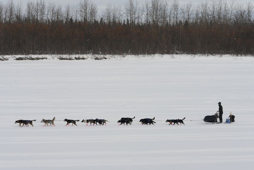 Musher Matt Failor drives his team down the Kuskokwim River after leaving the Iditarod Sled Dog Race  checkpoint in McGrath.  By this point, mushers are well ahead of any snowmobilers following the Iditarod Trail. (Bill Roth / The Anchorage Daily News)