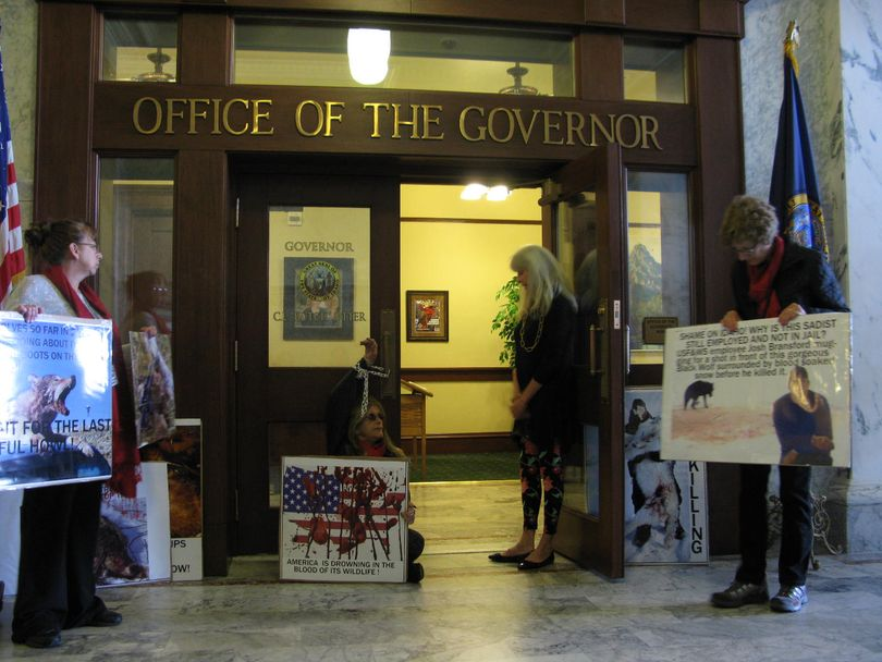 Pro-wolf protesters talk with Gov. Butch Otter's secretary after they chained a member's arm to the door of the governor's office on Monday. (Betsy Z. Russell)