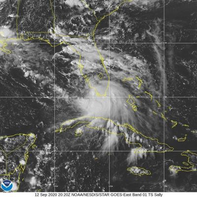 This Saturday, Sept. 12, 2020 image provided by NOAA shows the formation of Tropical Storm Sally. Tropical Storm Sally has formed off south Florida, becoming the earliest 18th-named tropical storm on record in a busy Atlantic hurricane season.  (HOGP)